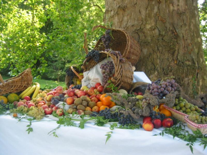 cascade de fruits extérieur