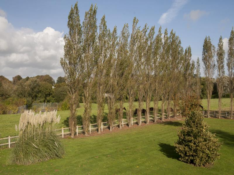 Jardin H�tel
