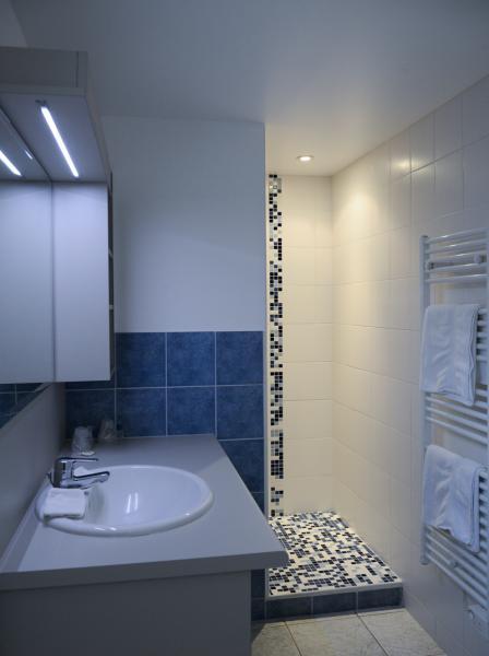 wc, lavabo, douche, séche cheveux et chauffe serviette