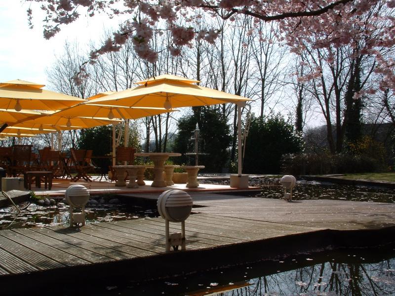 Notre terrasse et notre jardin