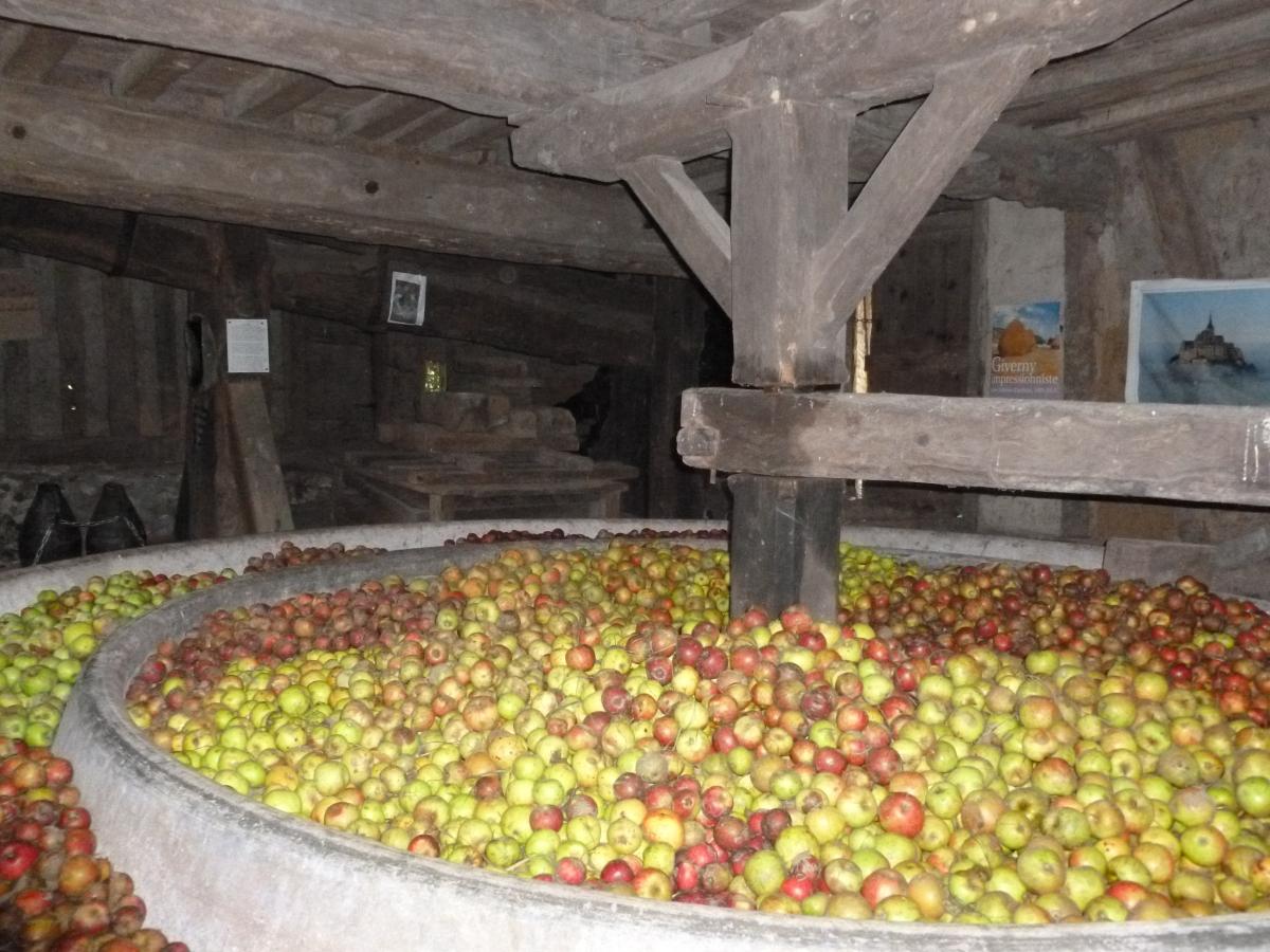 visite du pressoir à pommes du xvii siècle