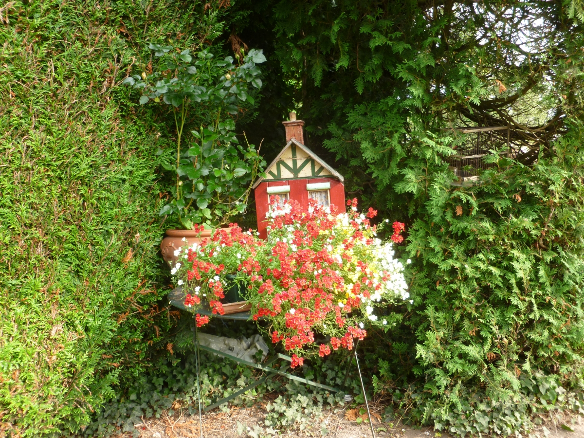 un détail du jardin