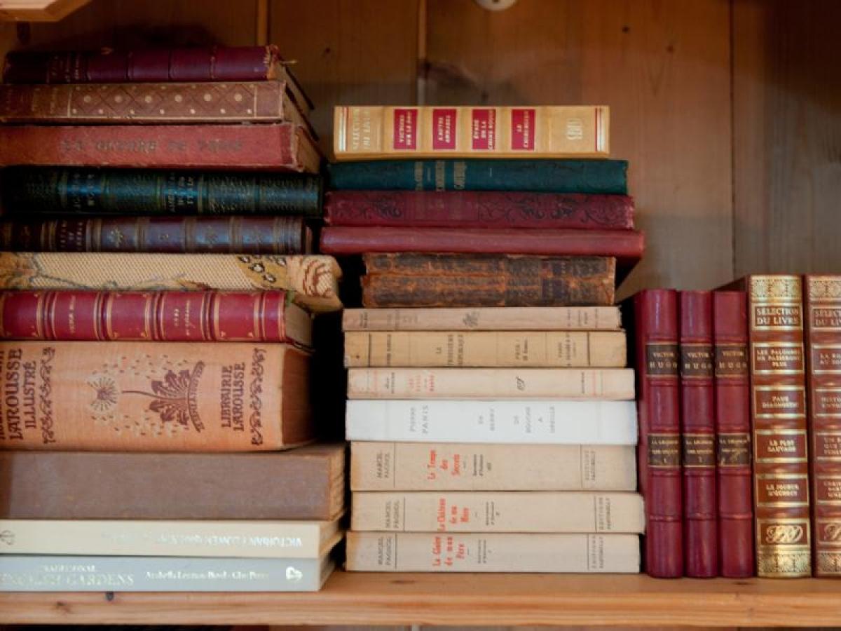 La bibliothèque de notre chambre écrivain