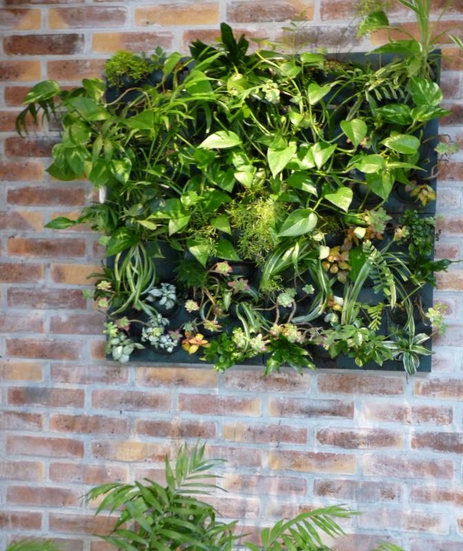 mur végétal réception