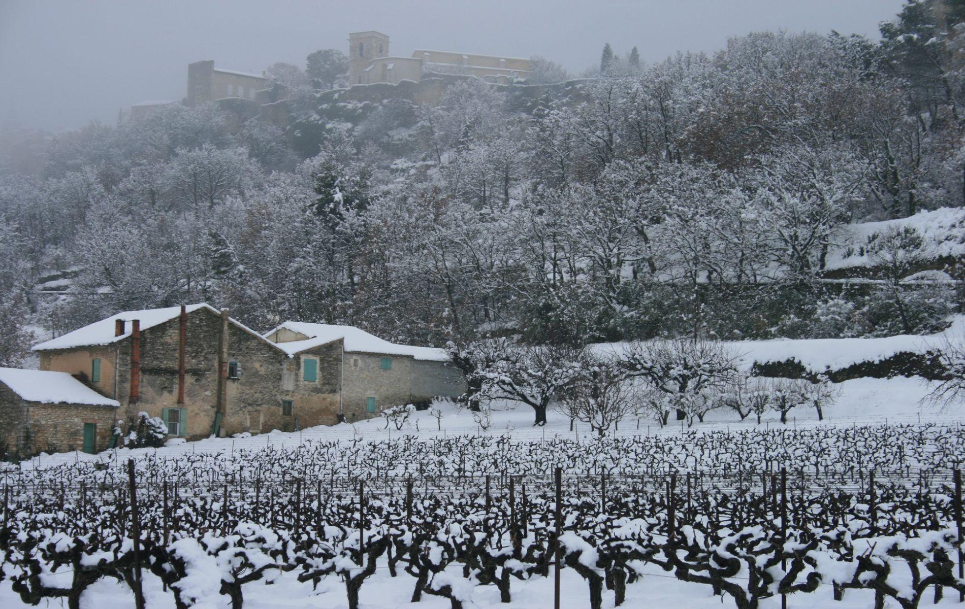 Paysage de Ménerbes sous la neige