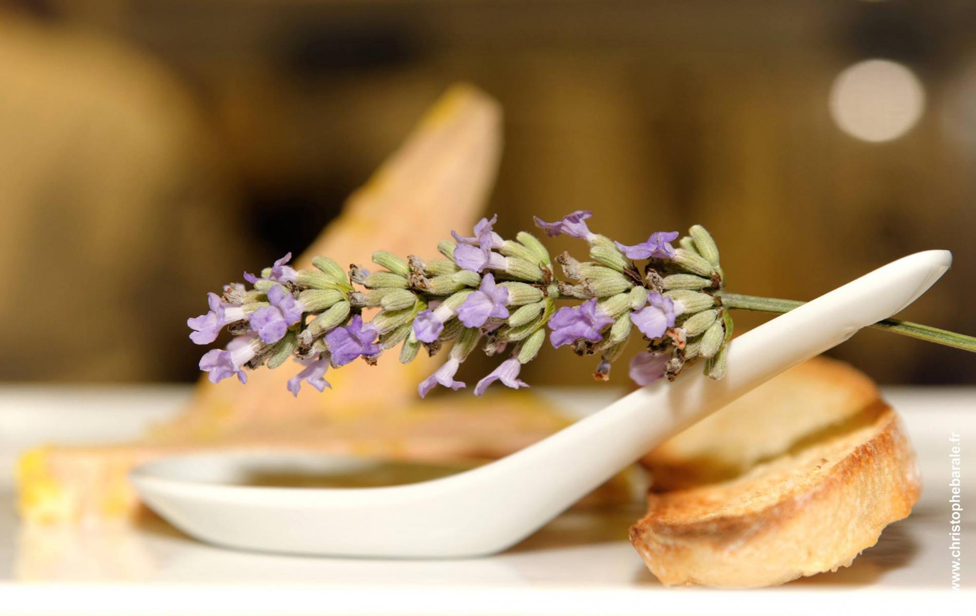 Au Canard Gourmand  Restaurant Gastronomique  U00e0 Samatan