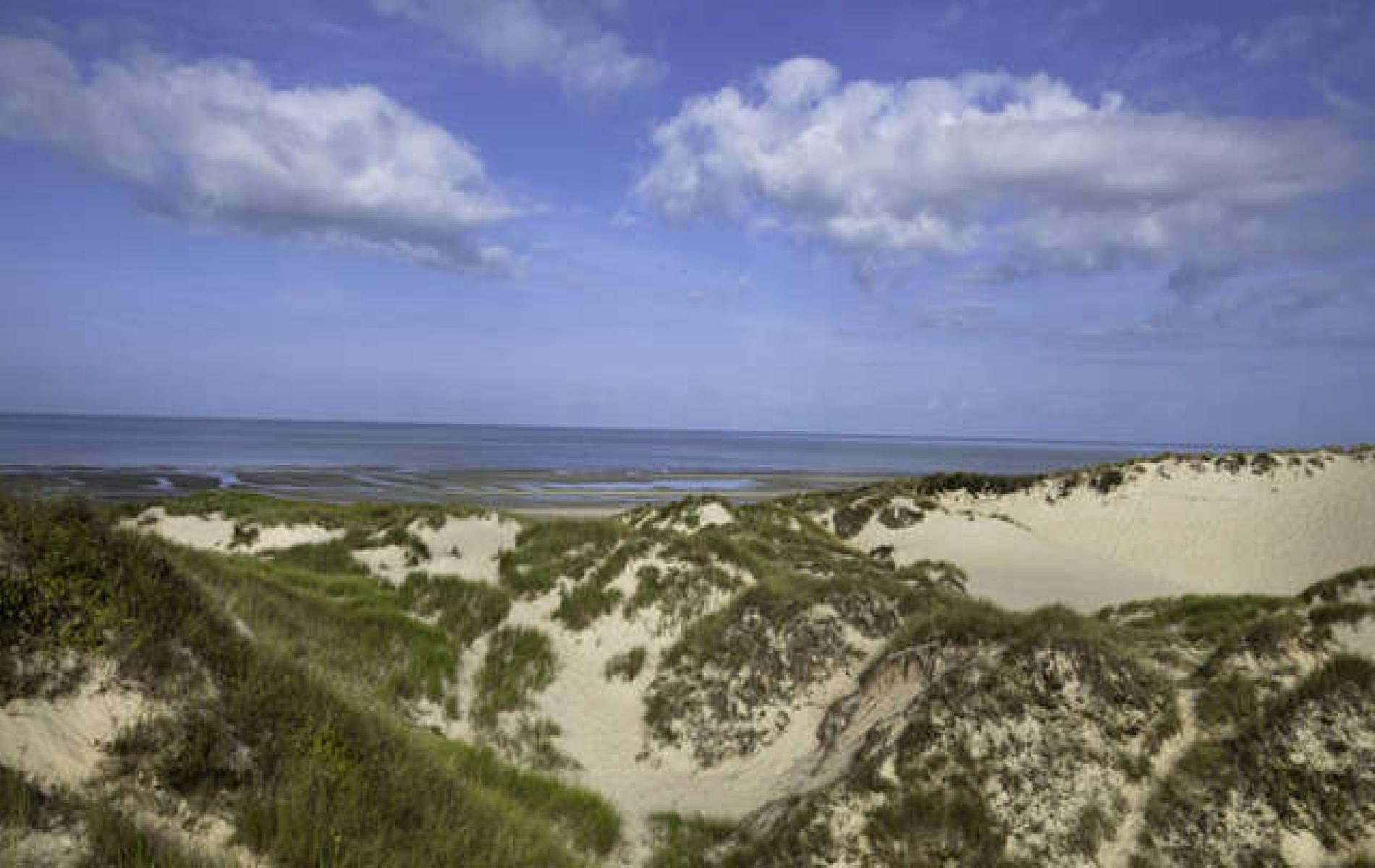 Vieilles Granges Dune de Mayville