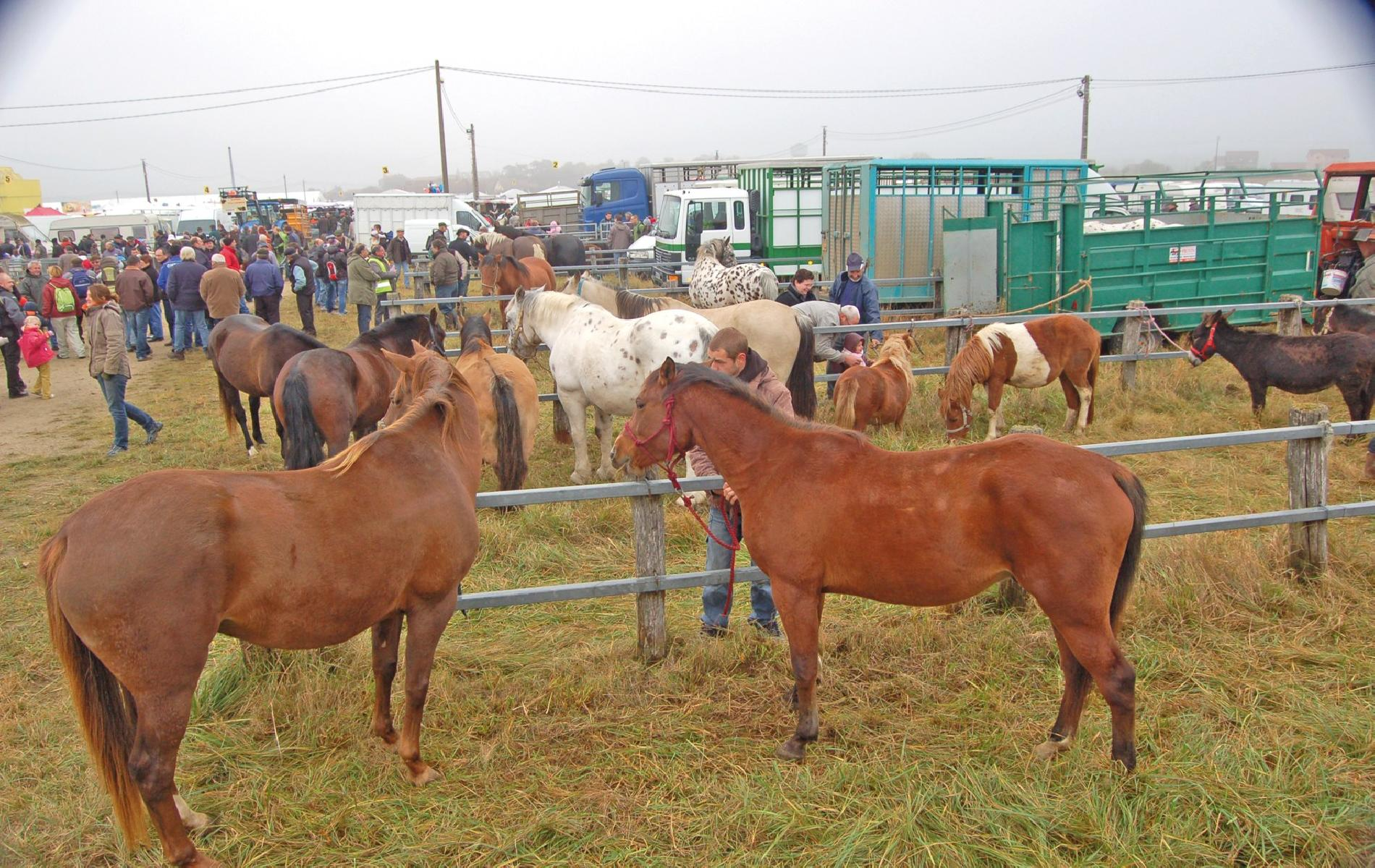 The agricultural fair of Poussay