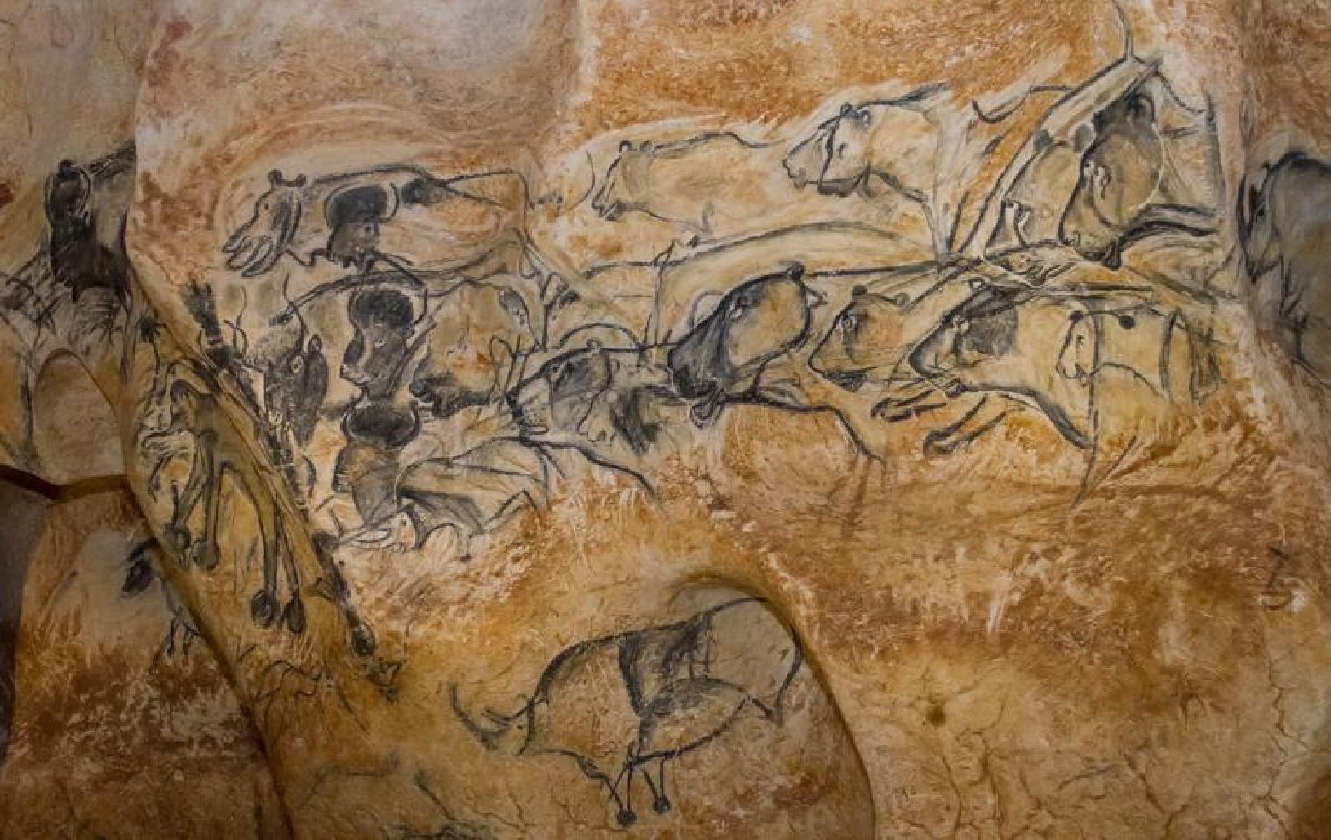 Grotte chauvet à Vallon Pont d'Arc