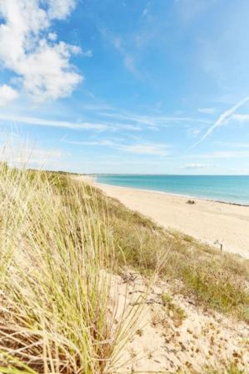 La plage protégée par les dunes
