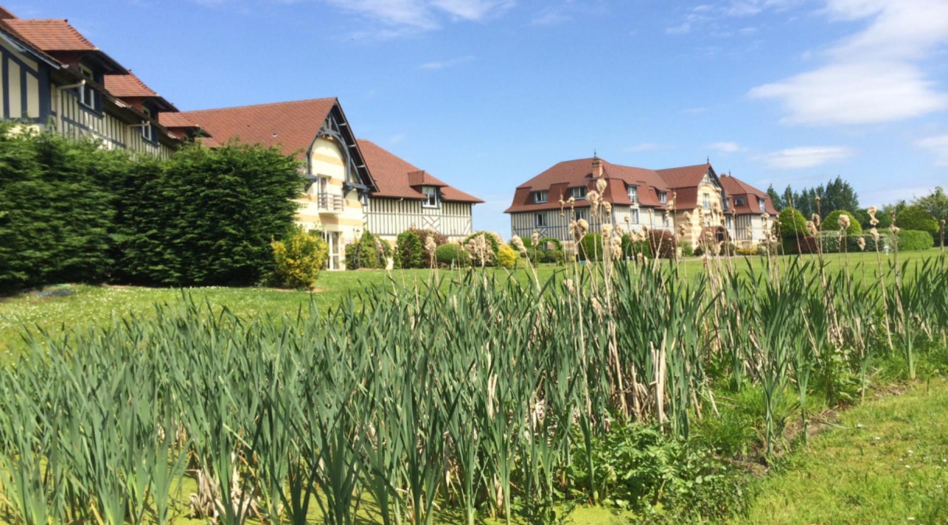 Joli parc arboré en Normandie