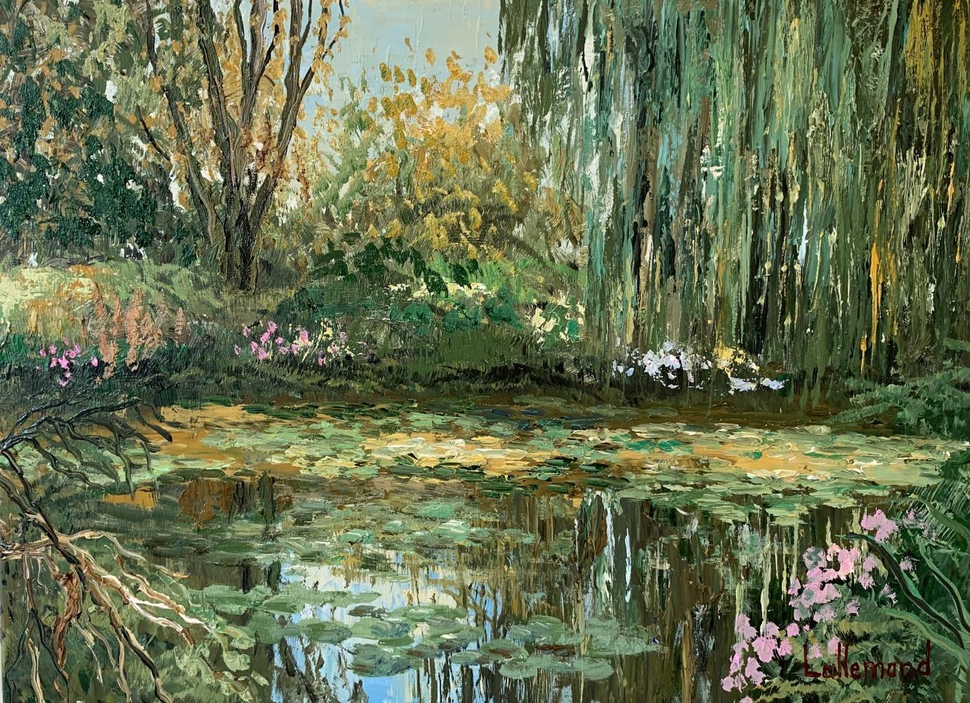 Rayon de lumière sur l'étang