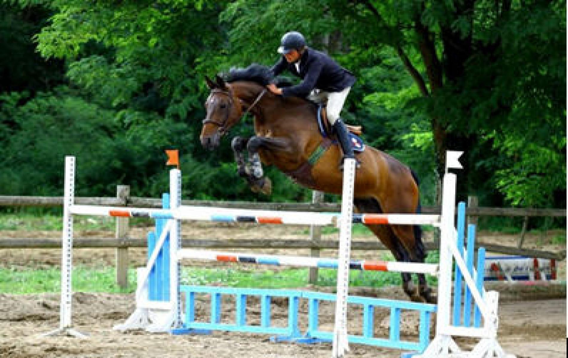 Espace Equestre Du Val Khyri Grand Fougeray Les Palis SPA
