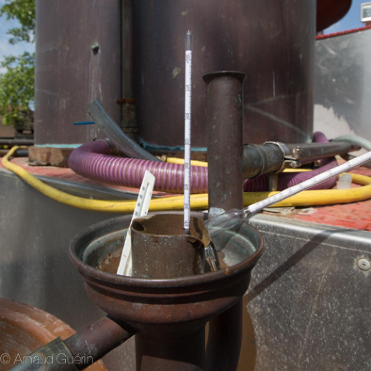 sortie de distillation