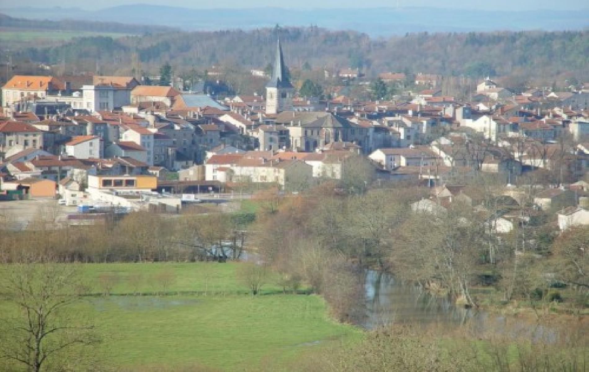 La ville de Mirecourt