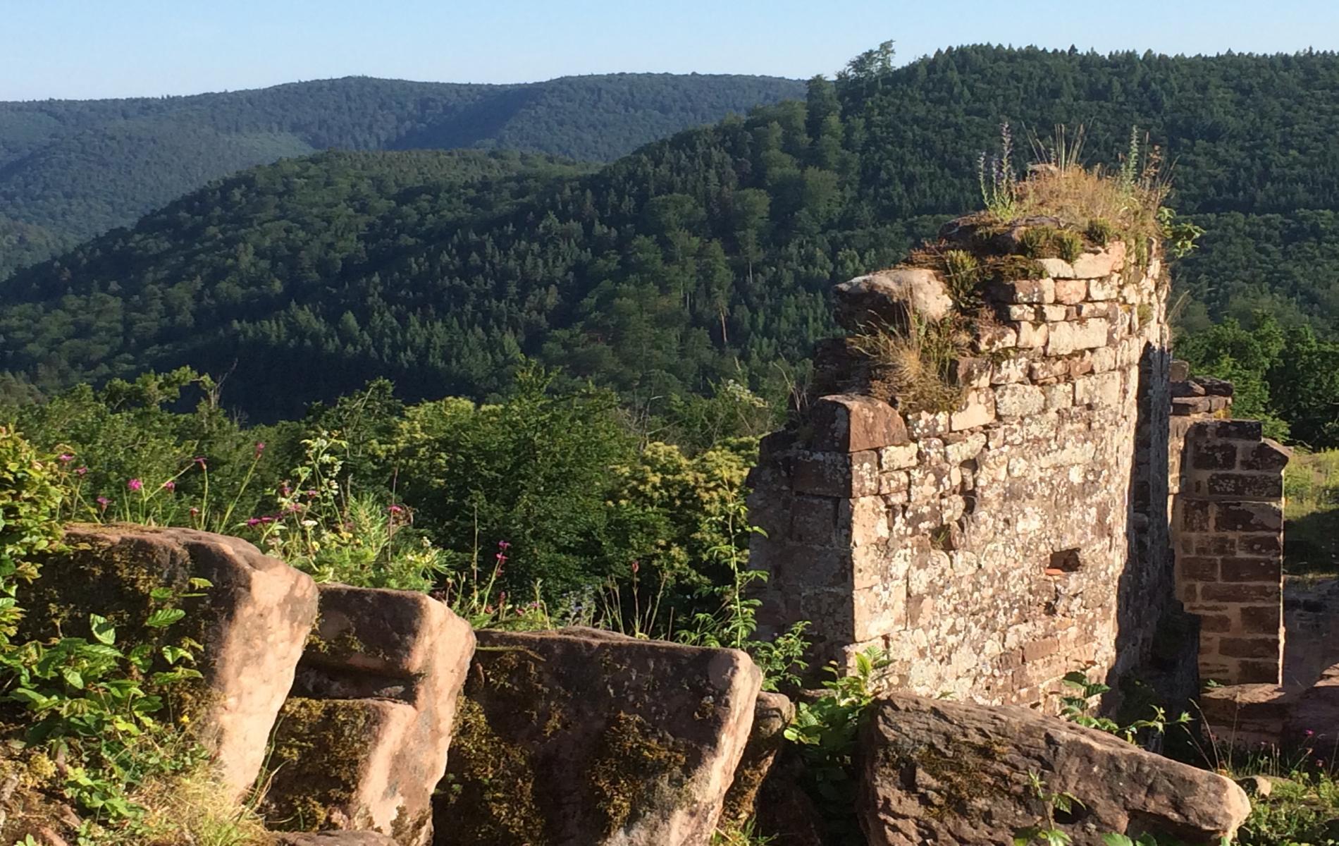 Découvrir les ruines de châteaux