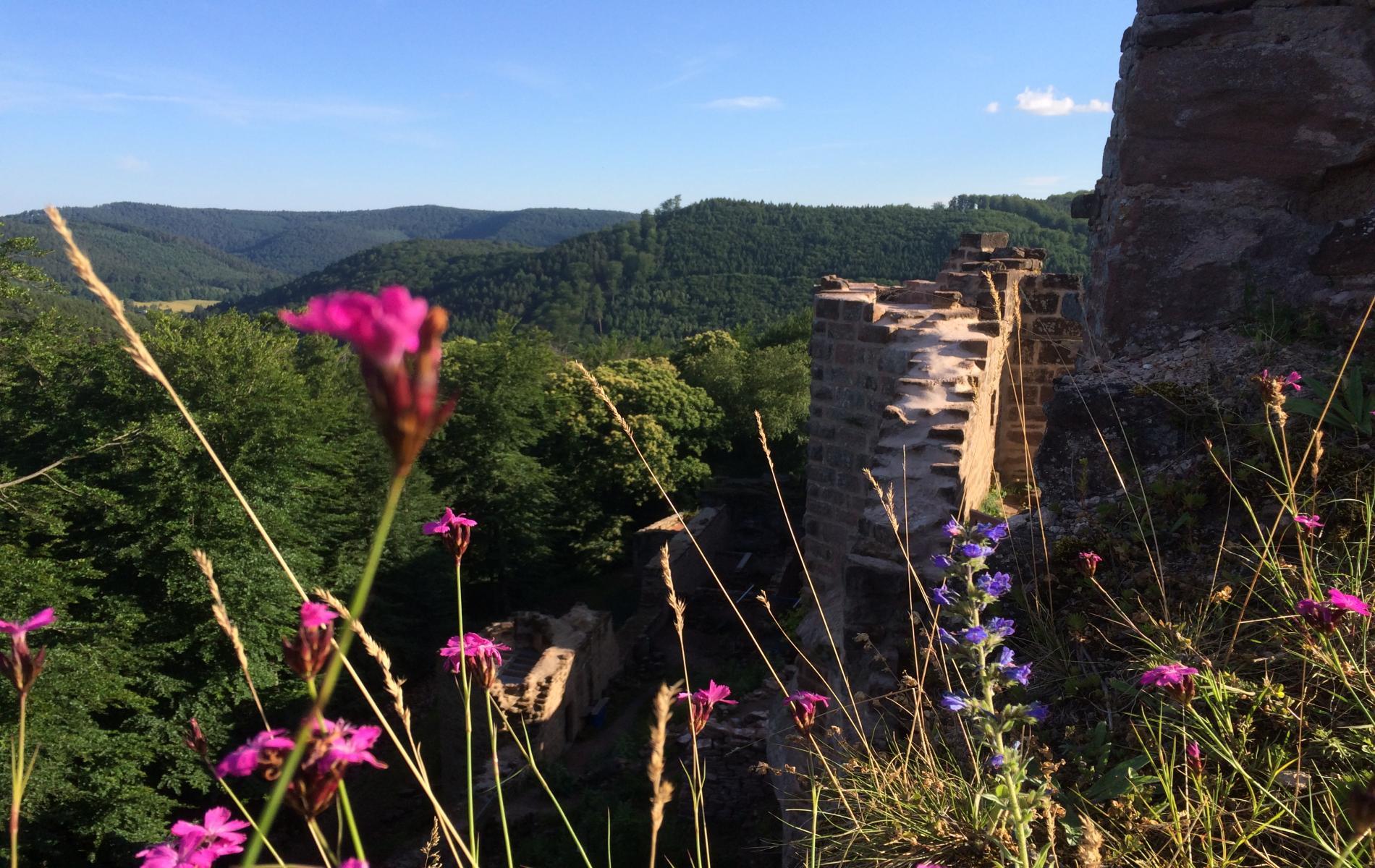 Les nombreuses ruines de châteaux