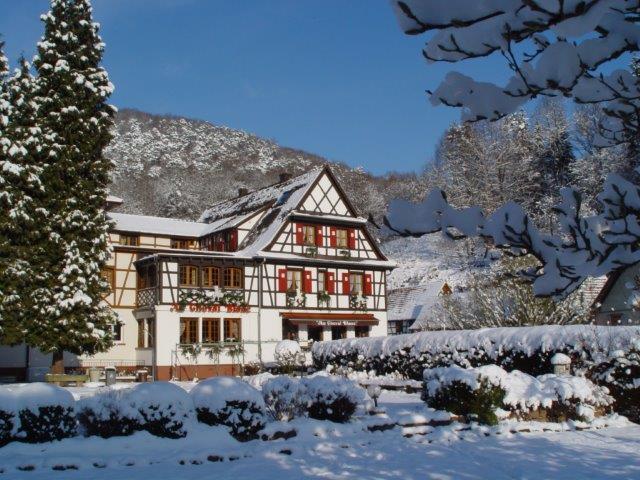 L'hiver à Niedersteinbach