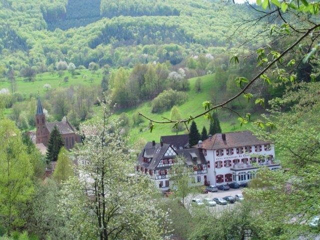 Le printemps à Niedersteinbach