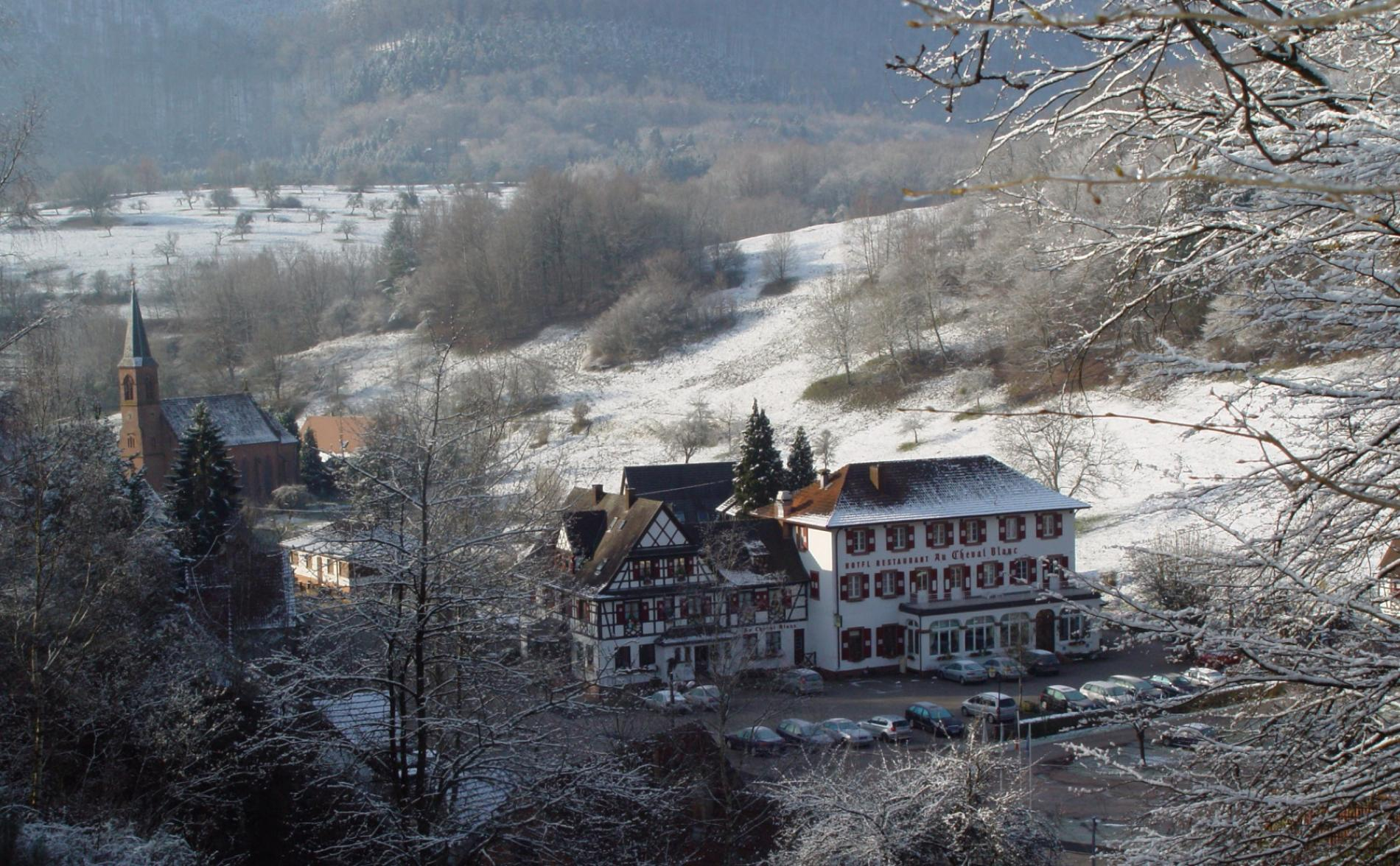 un moment de détente à Niederstienbach