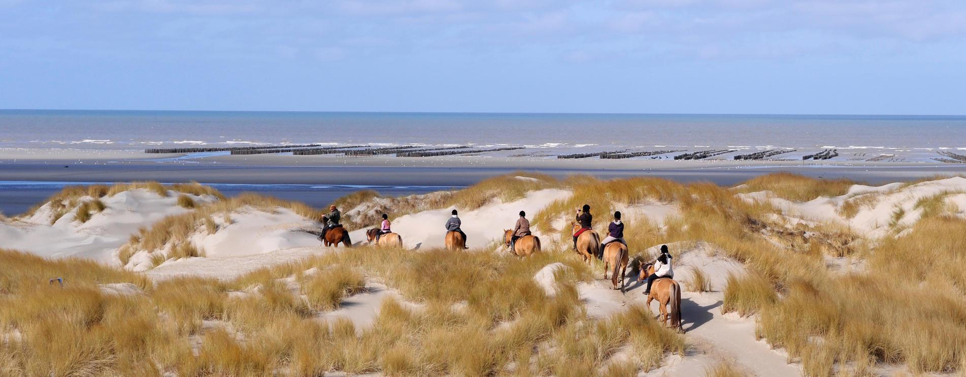 Henson equestrian centers