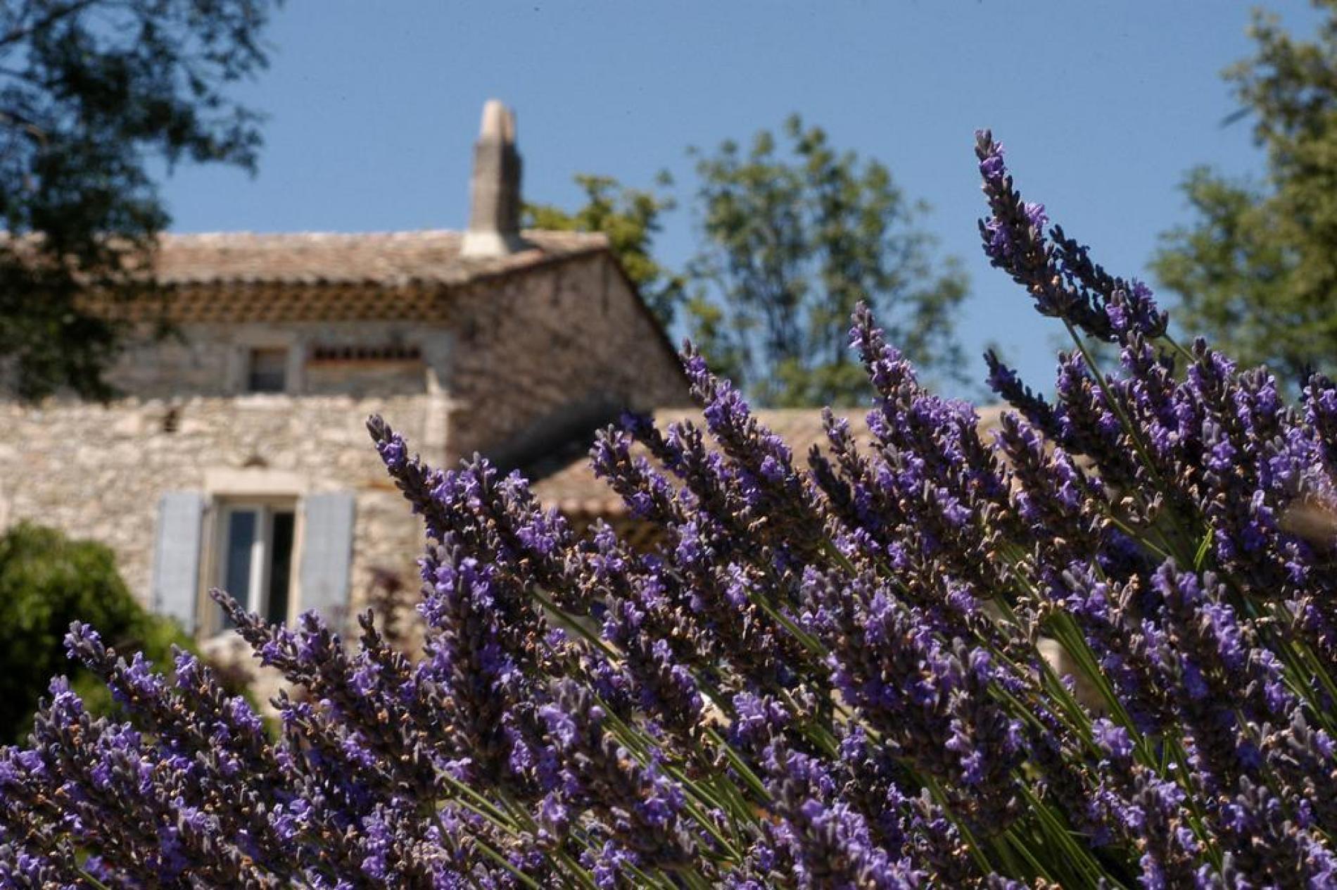 La Drôme Provençale, terre de charme d'une tranquille beauté se dévoile depuis La Vivande à Marsanne.