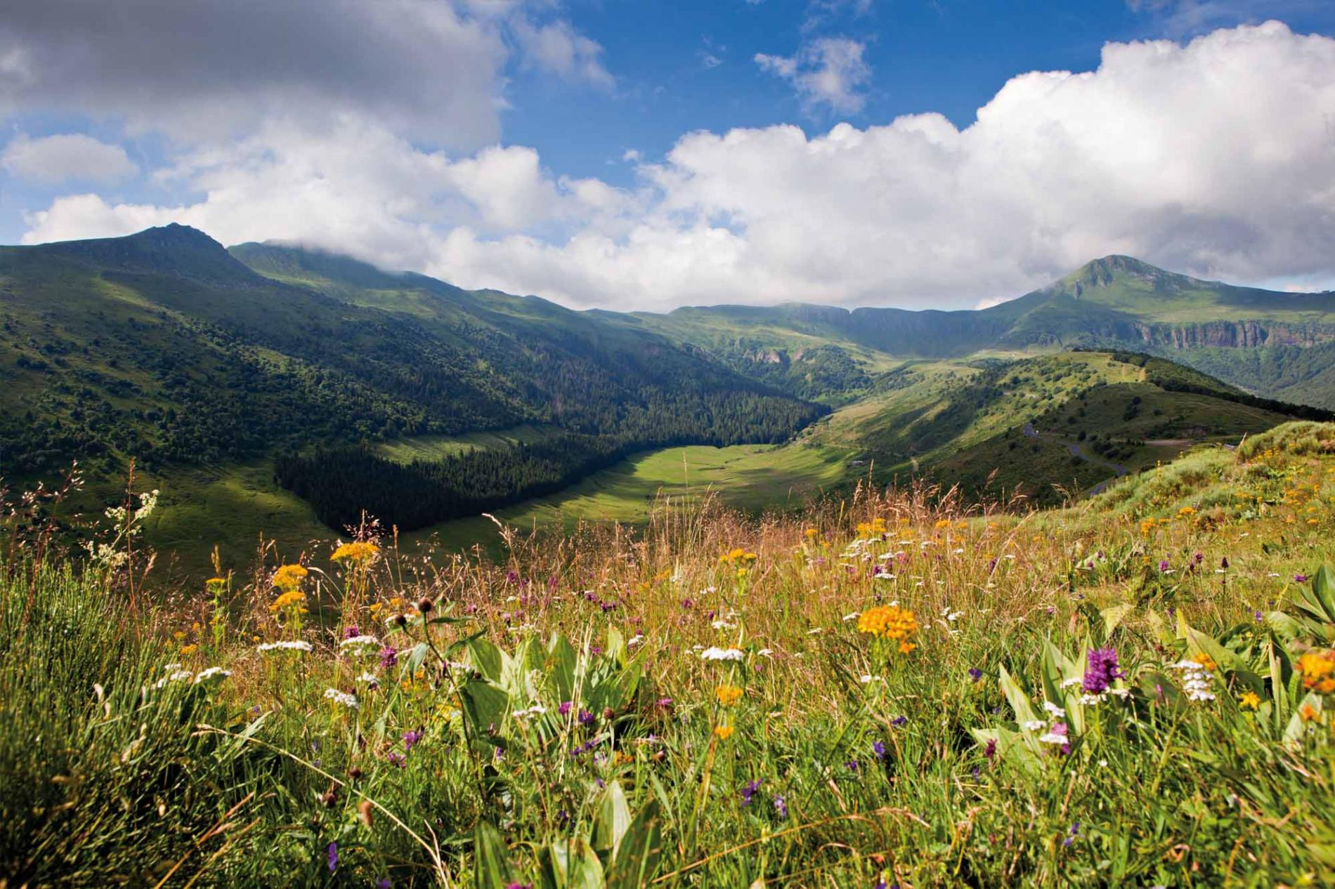 Cantal, a beautiful region to discover from the Maisons de Montagnes