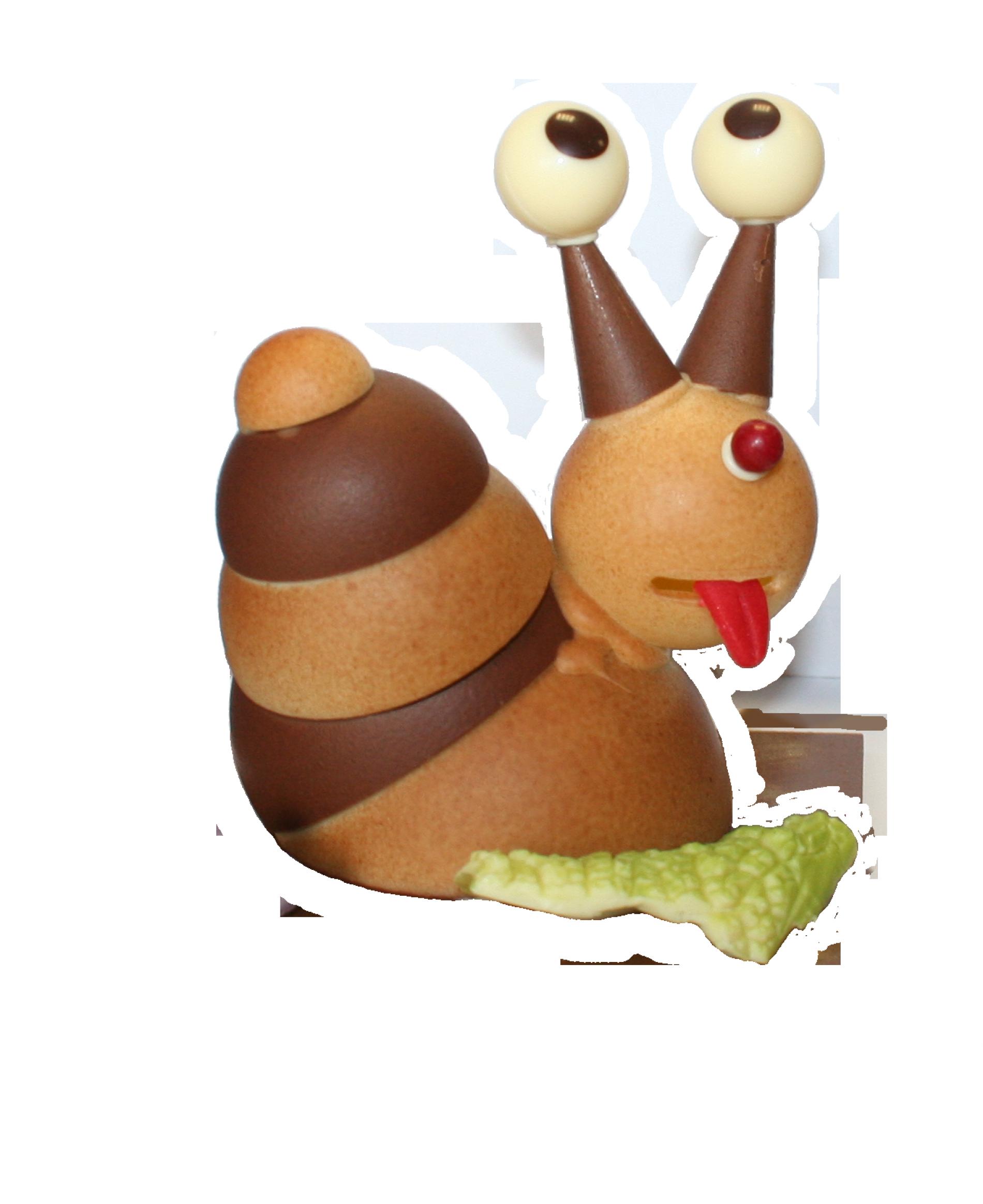 Arnaud, l'escargot.