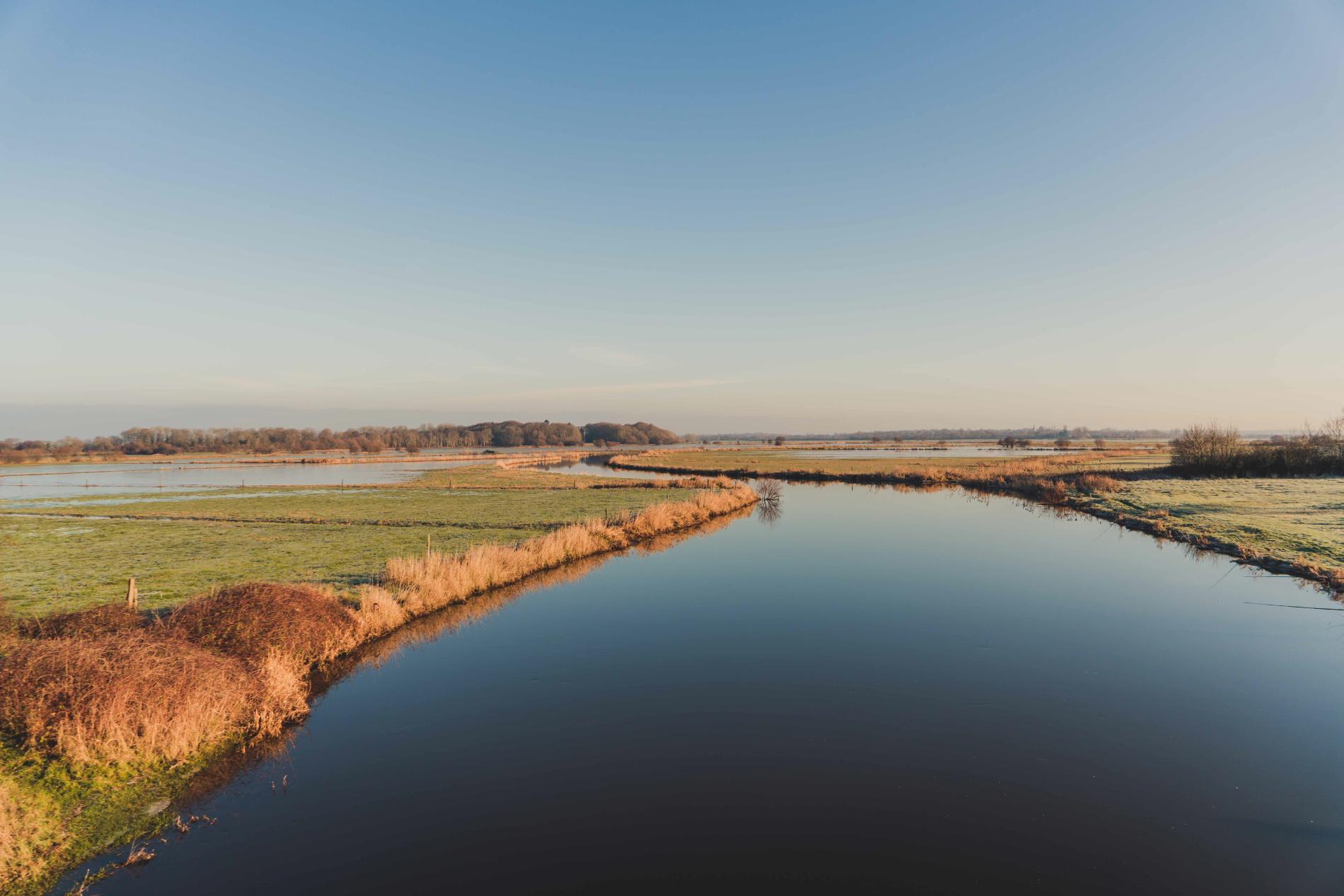 les marais du coté de Carentan