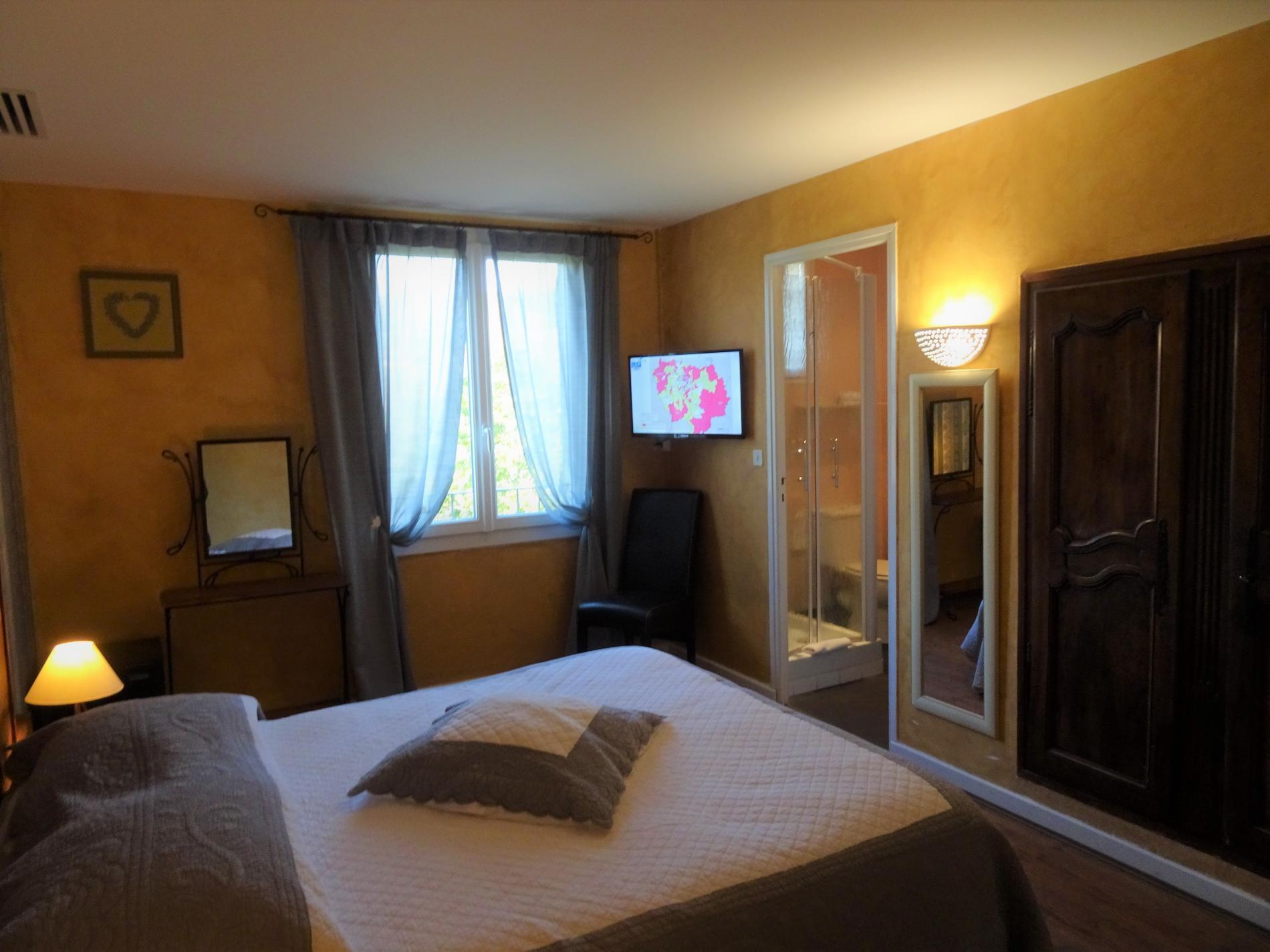 Chambre d'hôtel avec grand lit et vue parc