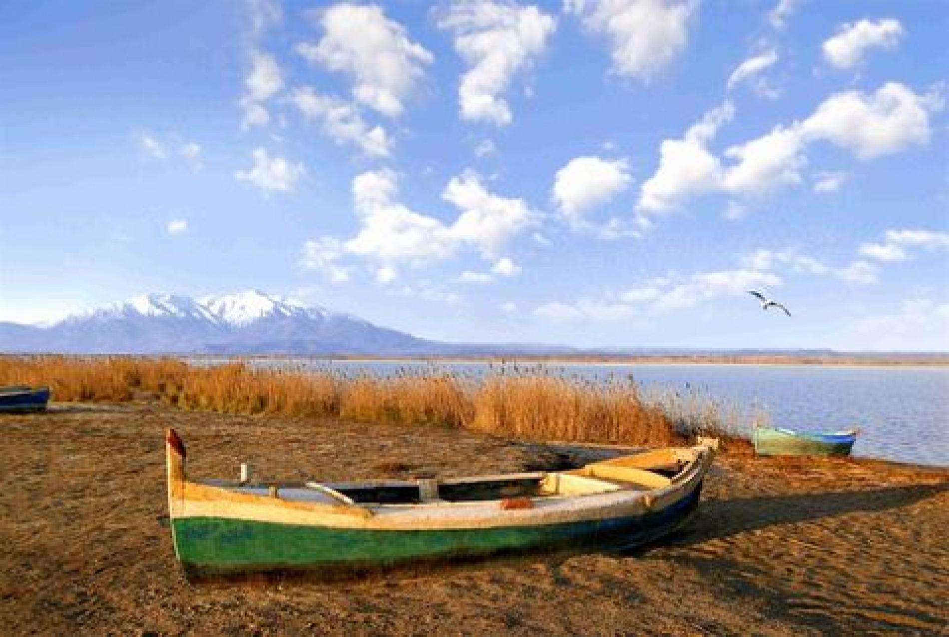 barque étang de canet