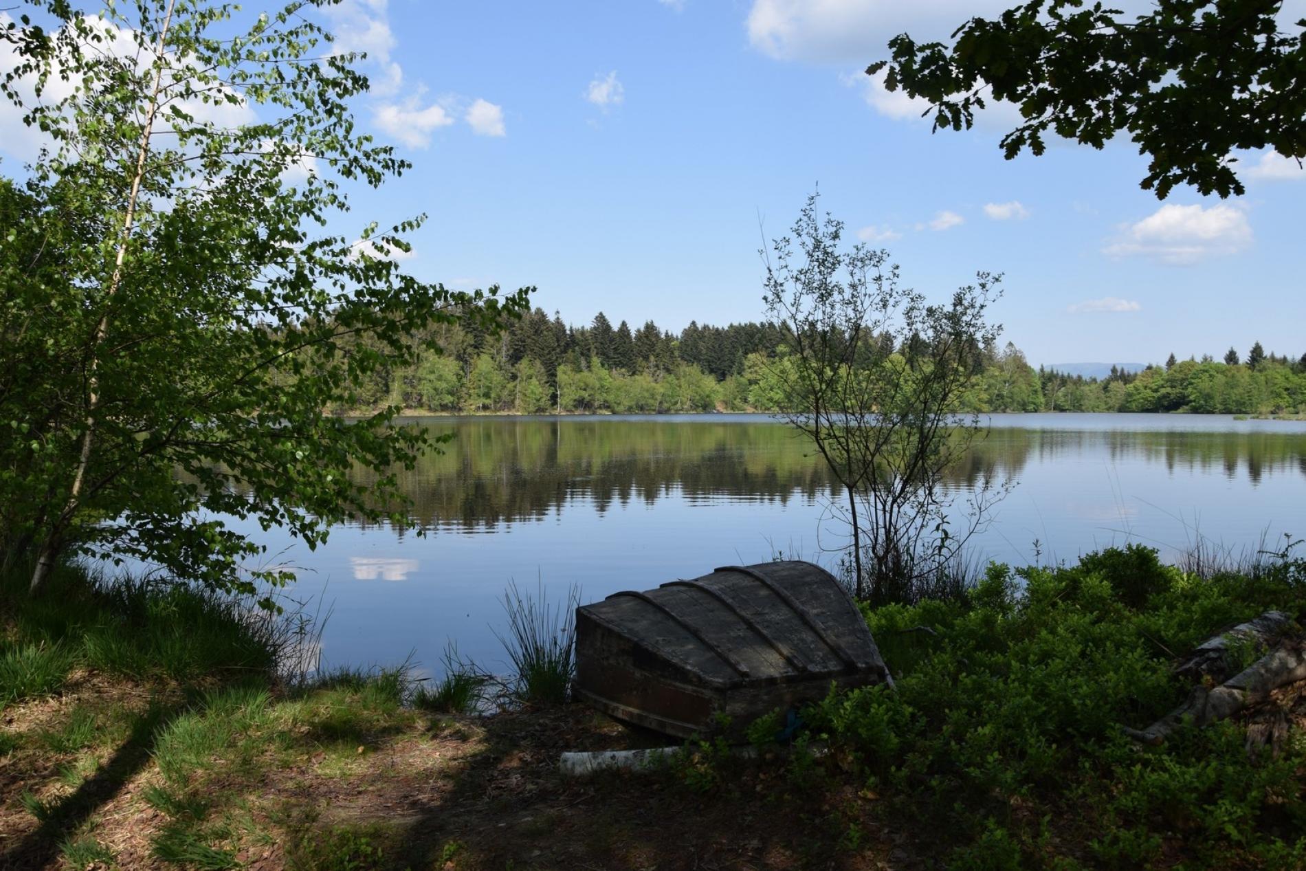 Les 1000 étangs