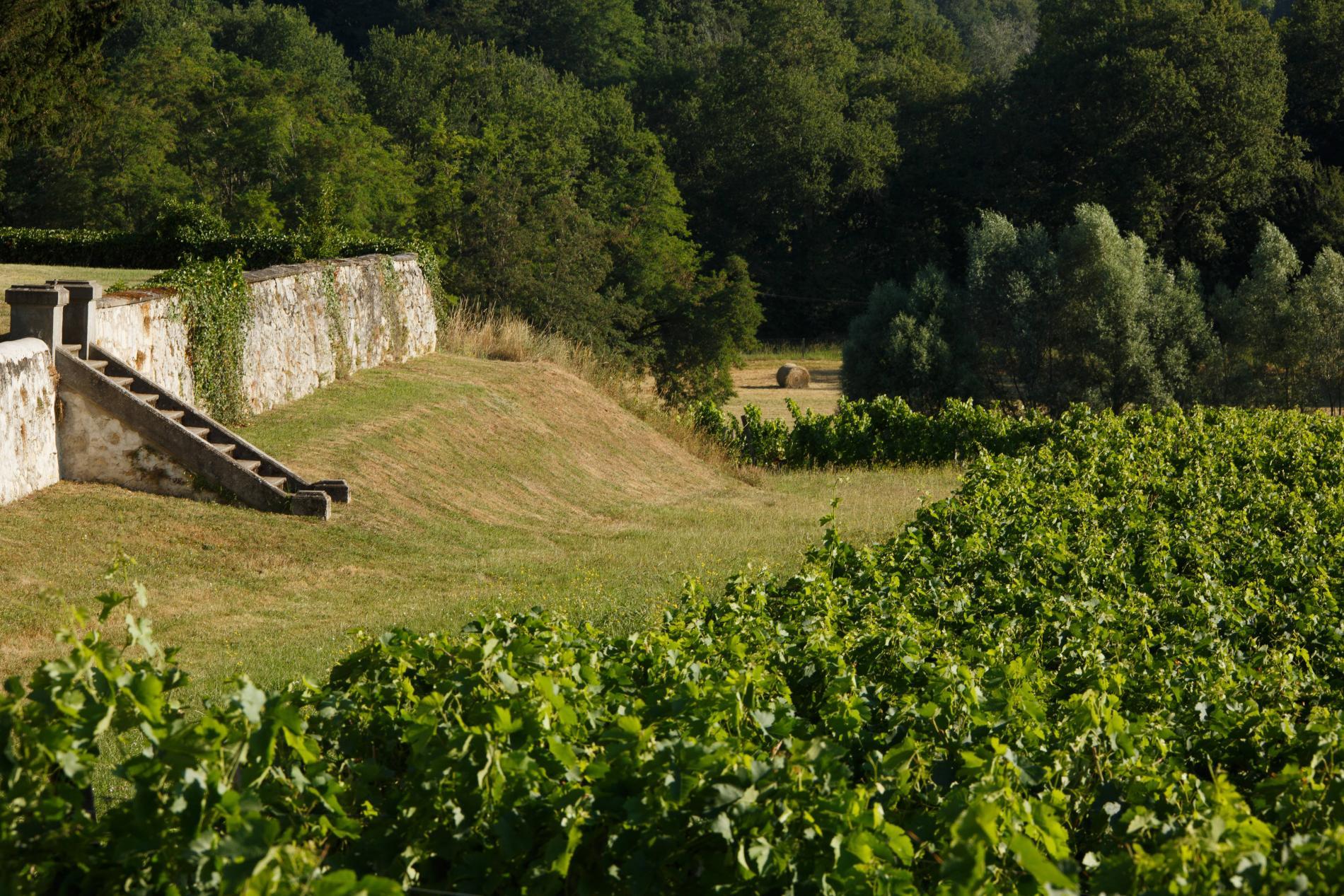 A mi-chemin entre Bordeaux et Saint-Emilion