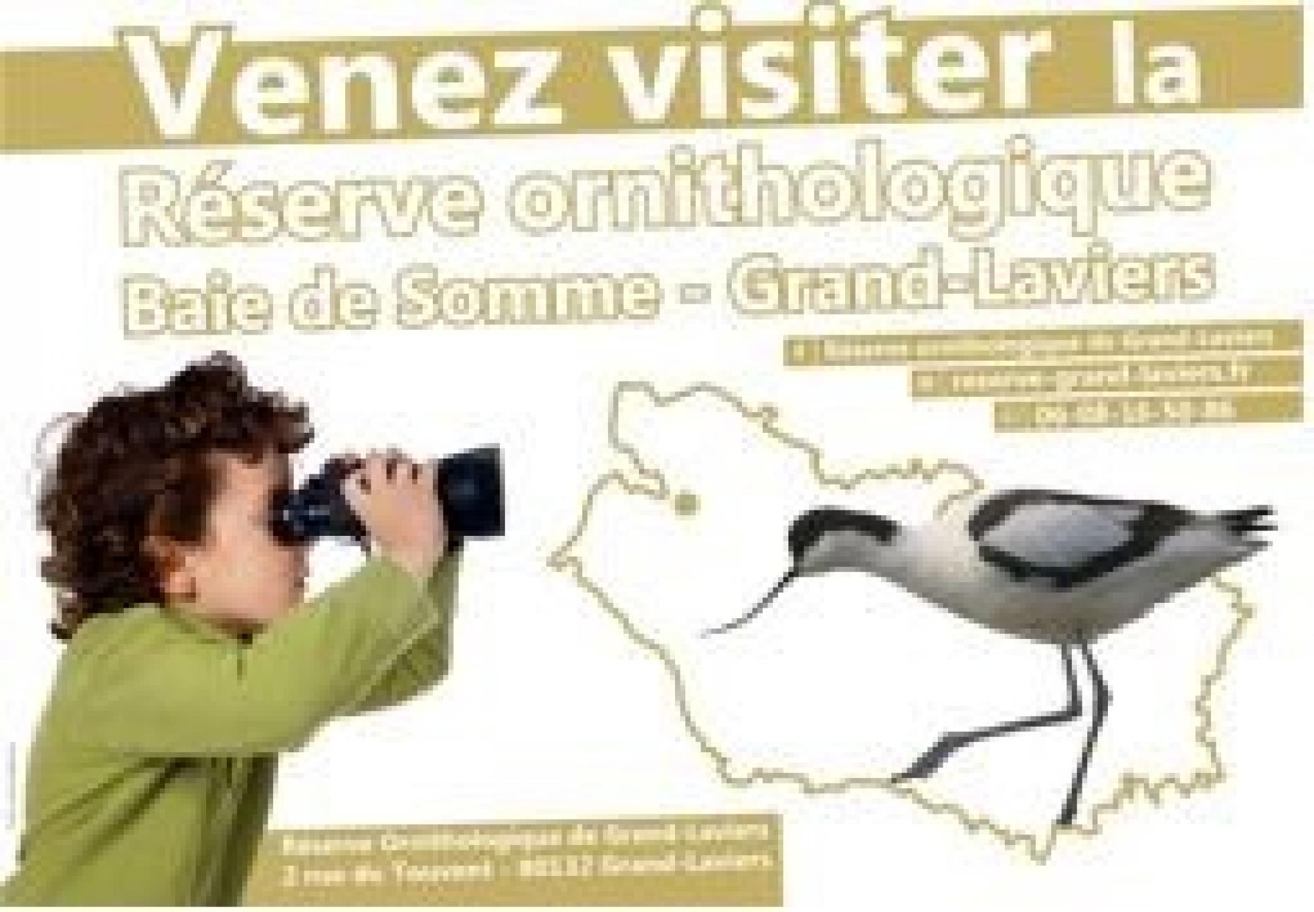 Réserve ornithologique Baie de Somme-Grand Laviers