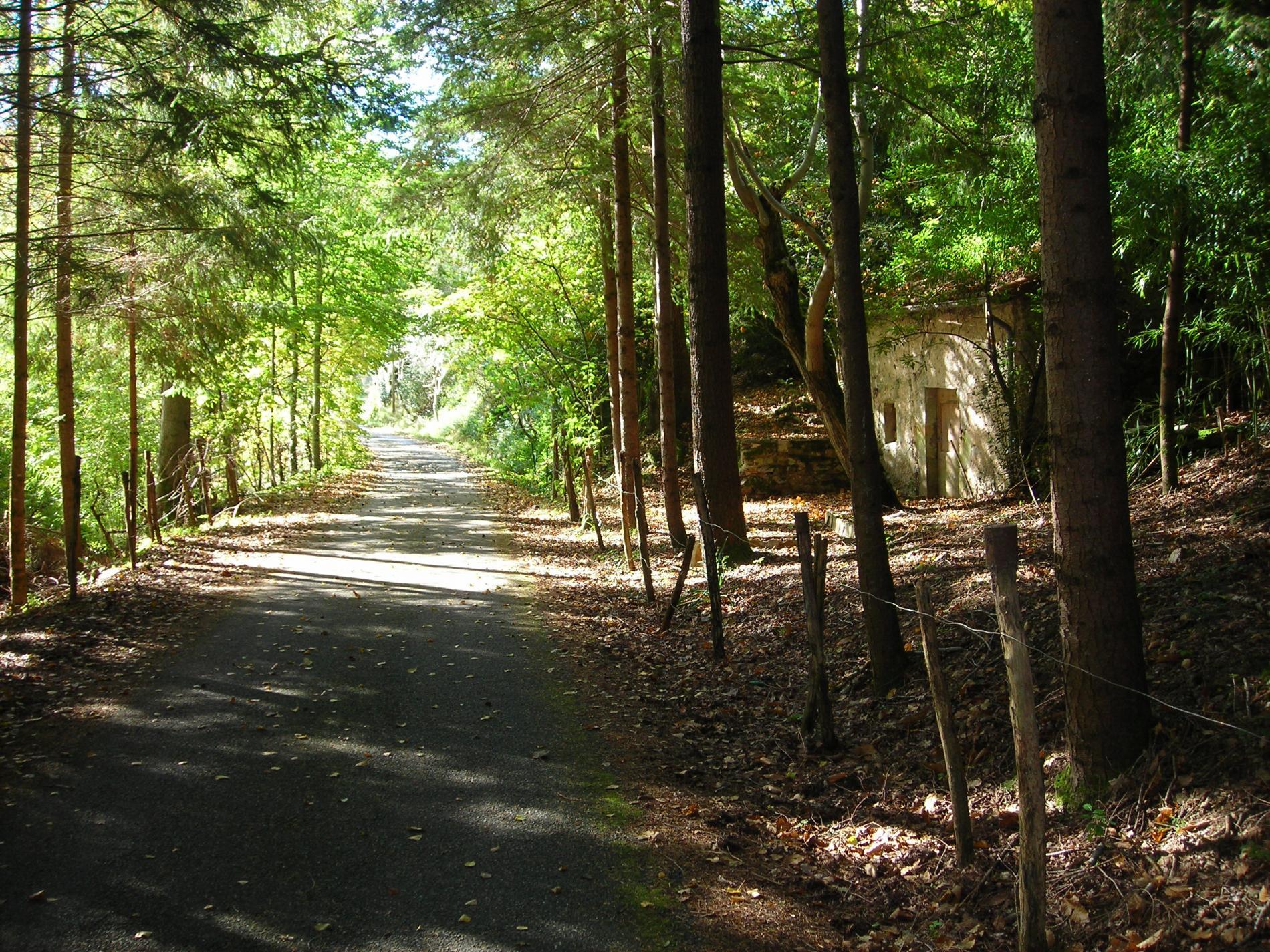 Randonnées autour de Najac