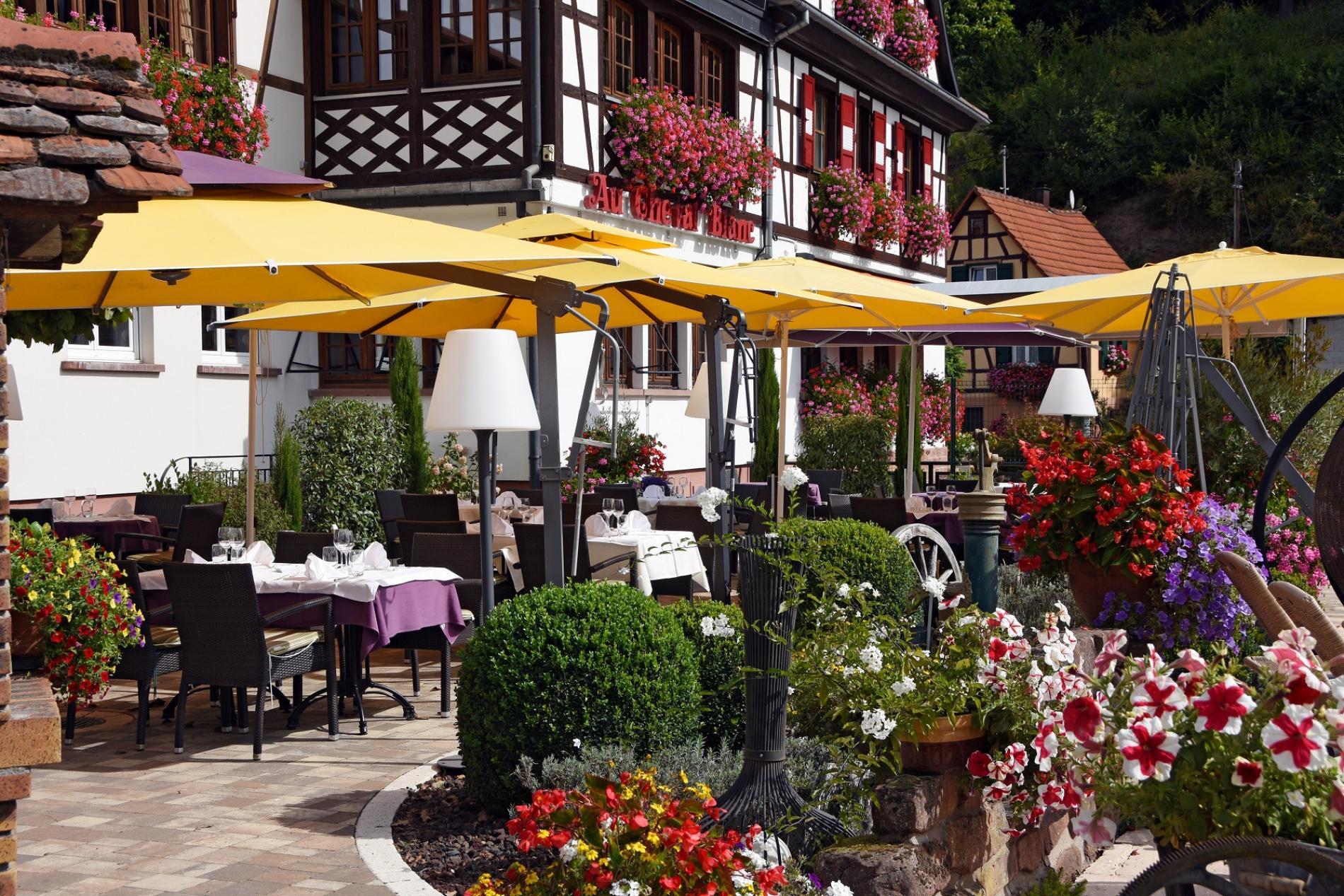 agréable terrasse en face de la piscine au cheval blanc à Niedersteinbach