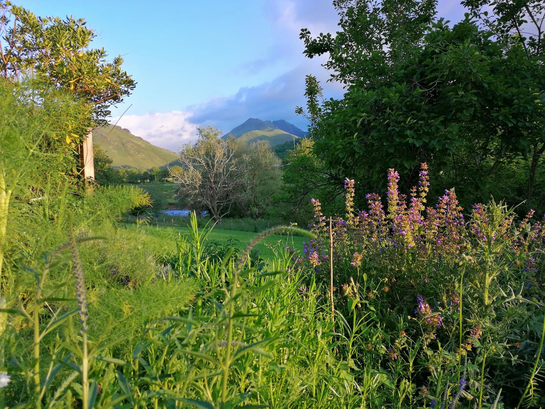 Montagne basque près de Saint-Jean Pied de Port