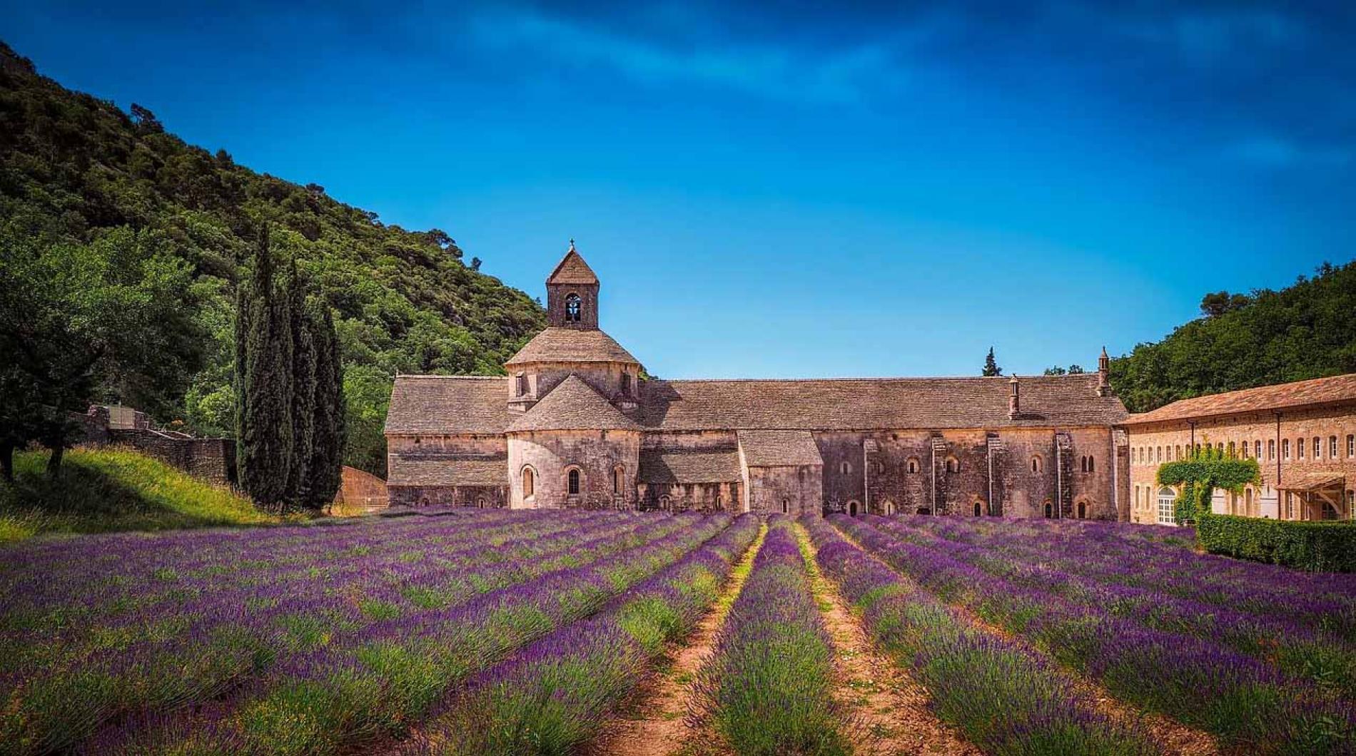 Tourisme en Provence : champs de lavande et villages de caractère