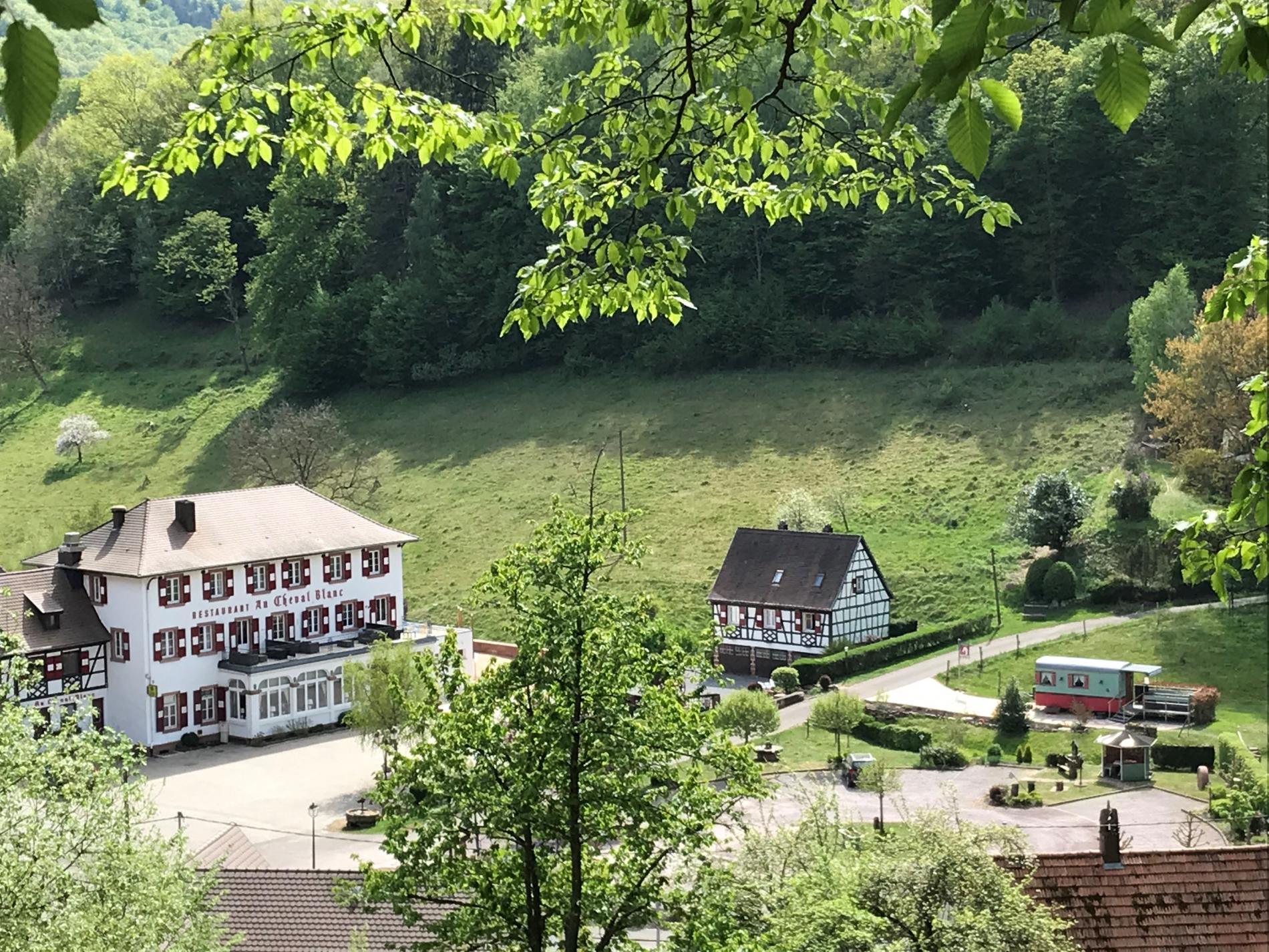 Vue sur le cheval blanc et sa roulotte à quelques kms de Hunspach village préféré des français en 2020