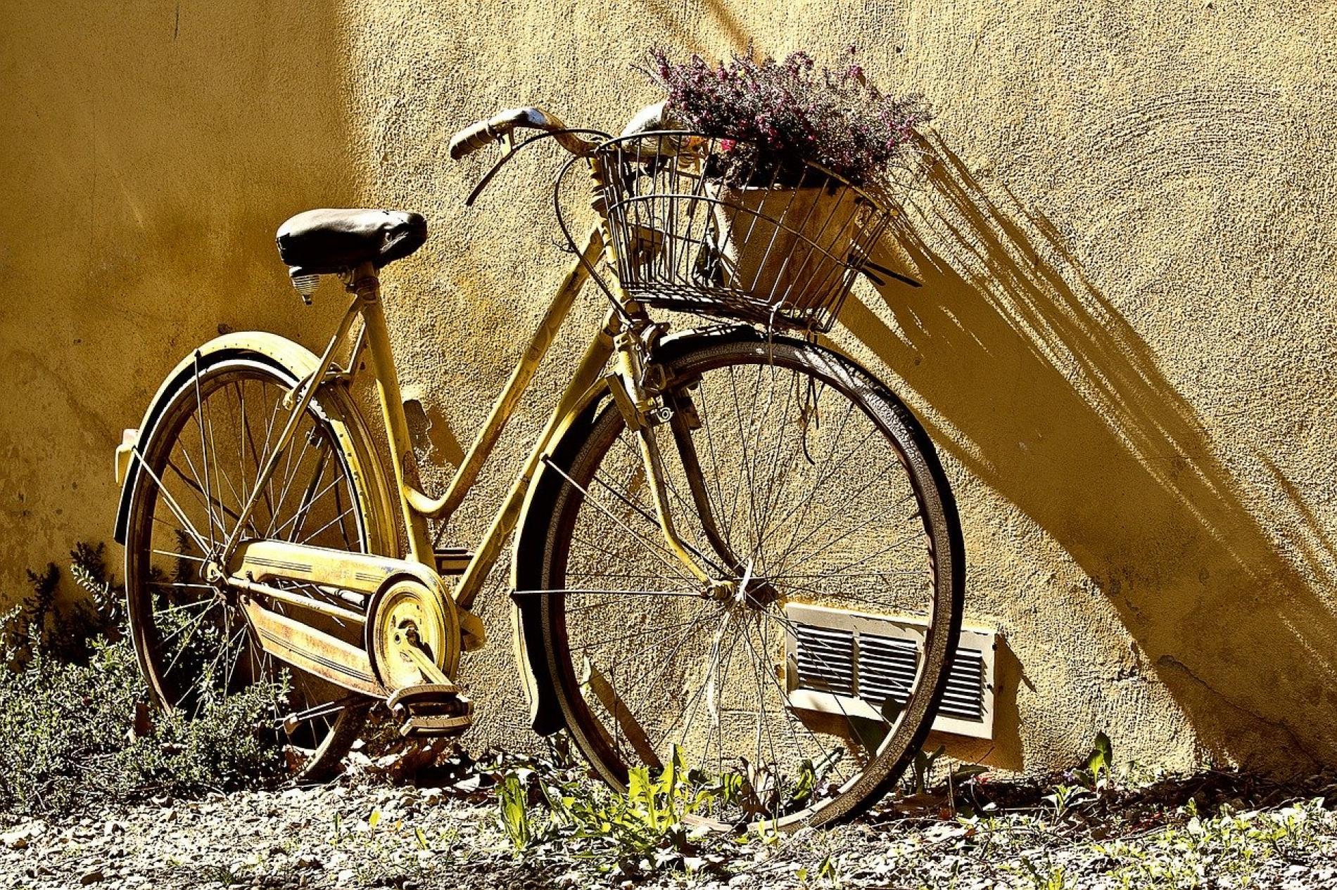 Louez des bicyclettes