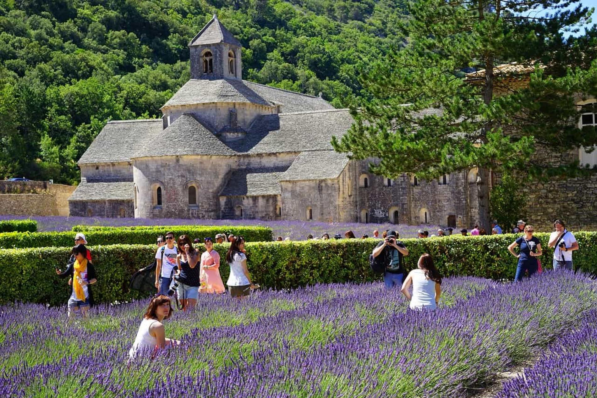 Provence & Lubéron: champs de lavande, villages de caractère et douceur du Midi