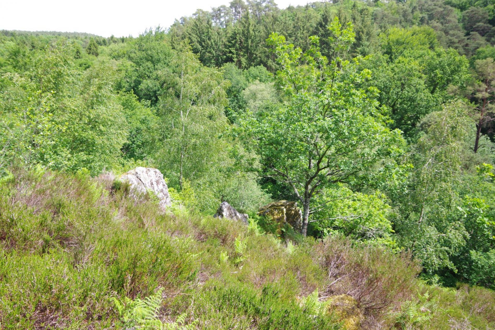 Gorges de Villiers proche de l'hôtel SPA Le Roc Au Chien Bagnoles de l'Orne Normandie