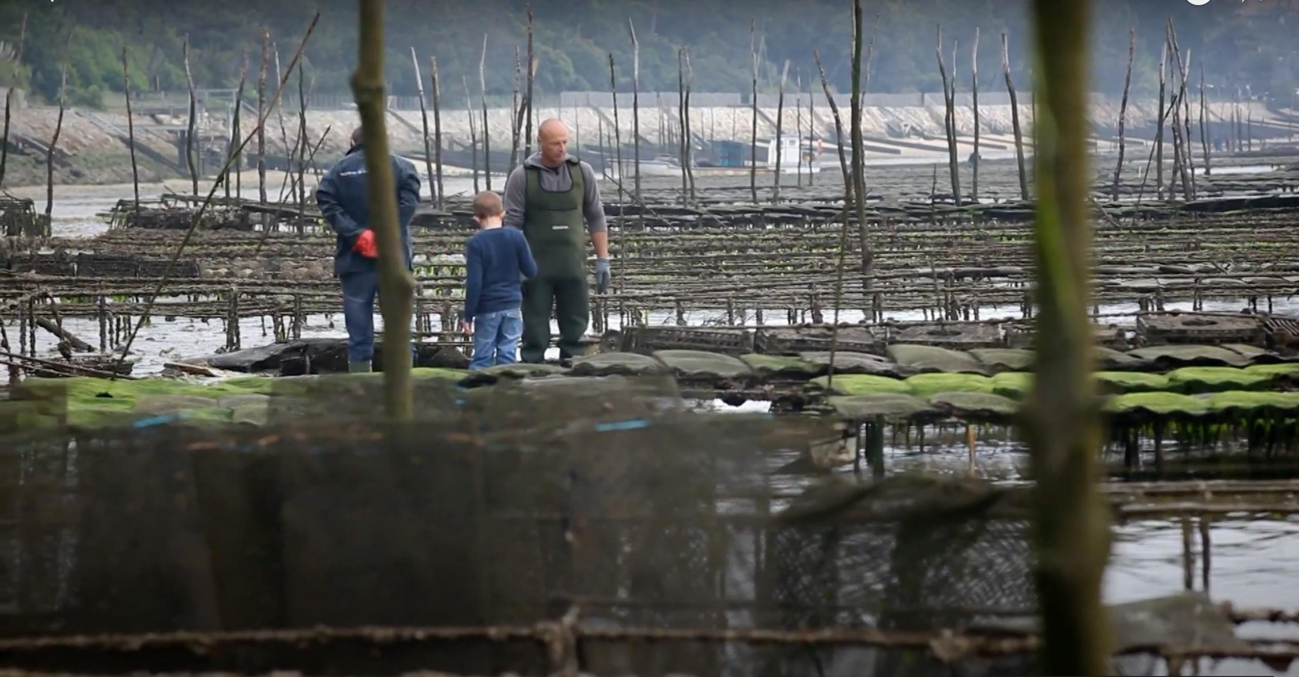SOUS RESTRICTION COVID - Sorties pescatourisme