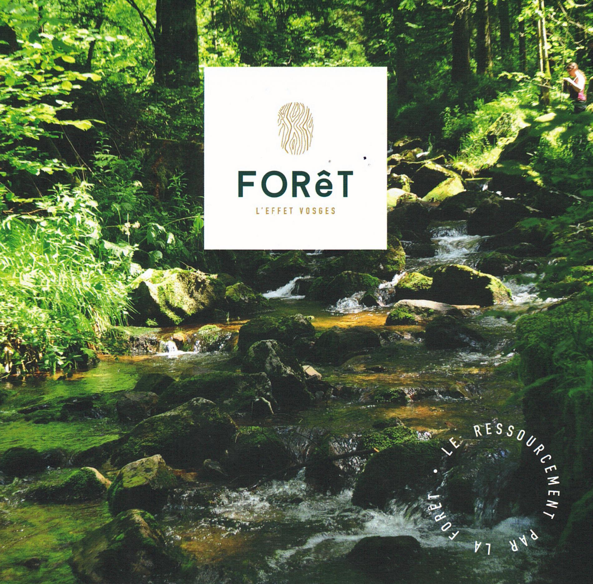 Foret l'effet Vosges -  Le ressourcement par la Forêt