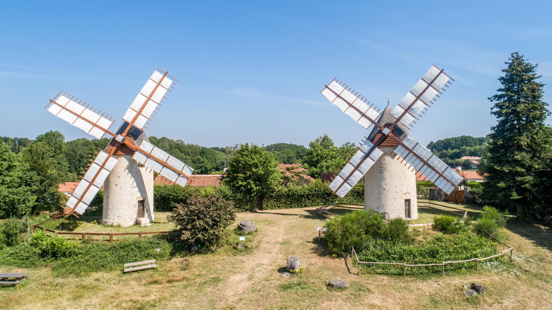 Les moulins du Terrier Marteau