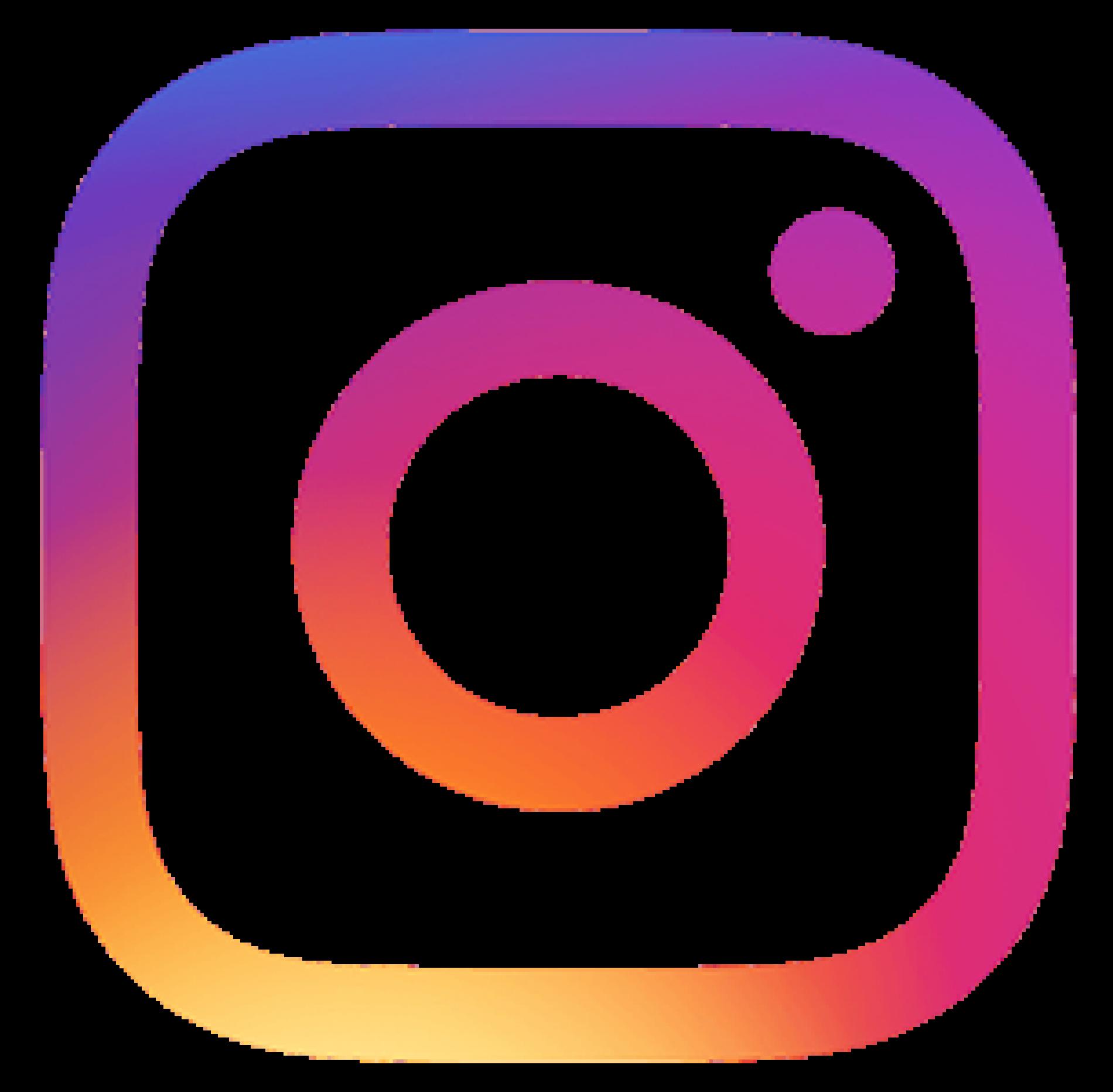 Logo Instagram hôtel du sauvage La Ferté Gaucher